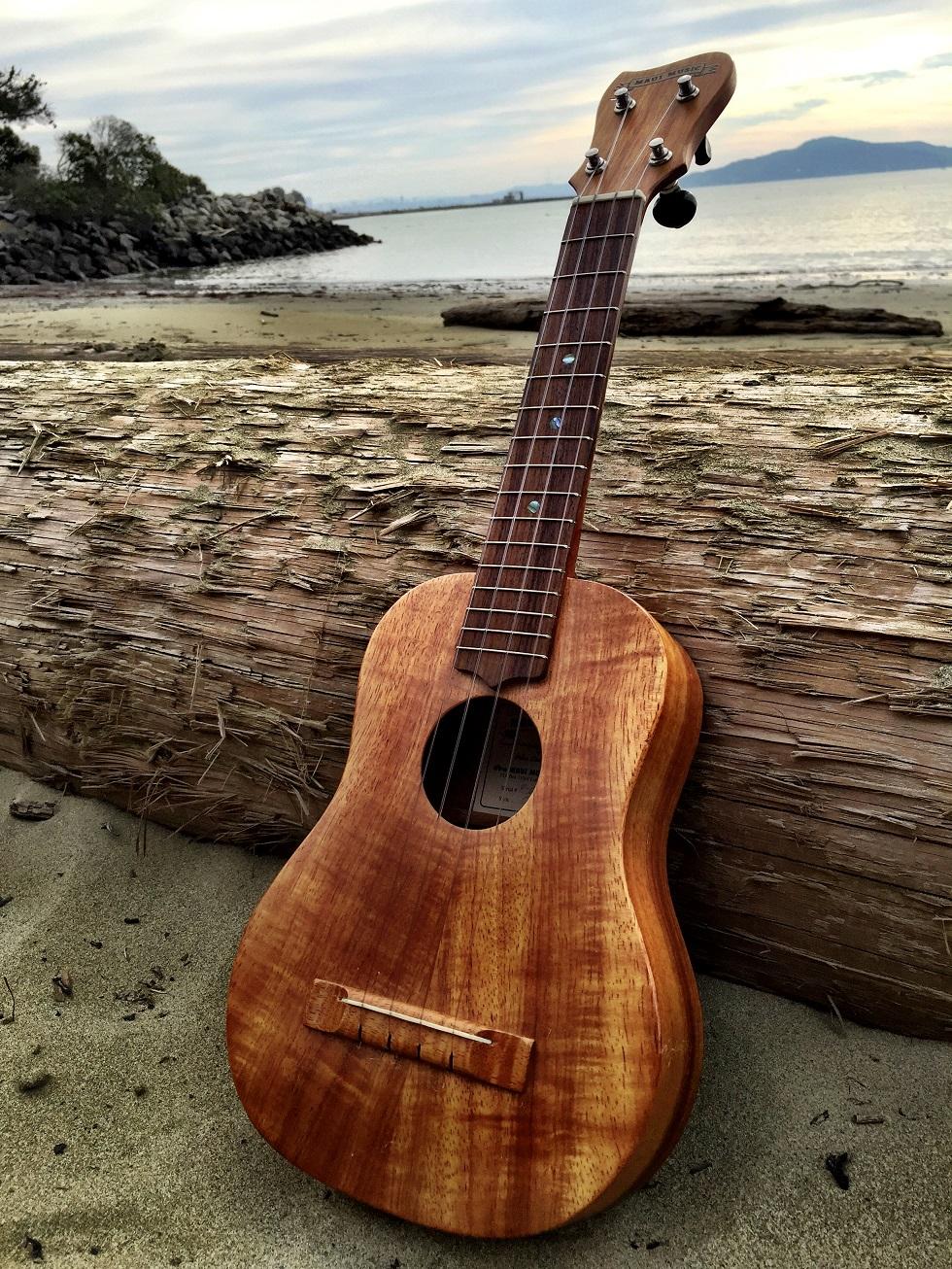 MauiMusic_000