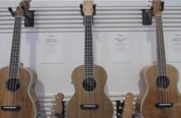 Fender Ukulele Summer NAMM