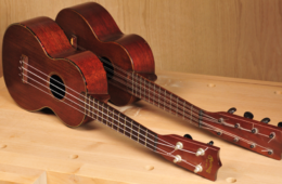 Martin Taropatch Ukulele Rare Vintage Instrument2